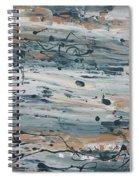 Irrational Exuberance Spiral Notebook