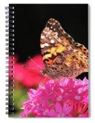 Irredescent Spiral Notebook