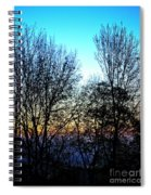 Irreplaceable Beauty Spiral Notebook