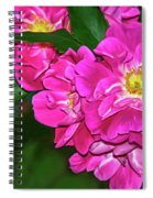 Irresistible Rose - Paint Spiral Notebook