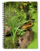 Is Green In Spiral Notebook