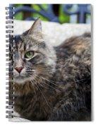 Isabella Spiral Notebook