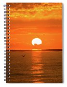 Island Of The Sun Spiral Notebook