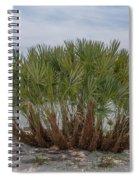 Island Palms Spiral Notebook