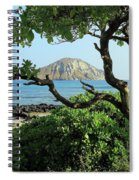 Island Through The Trees Spiral Notebook