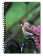 Isn't She Lovely Spiral Notebook