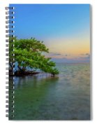 Isolation Spiral Notebook