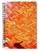 It Walks Like A Duck Spiral Notebook