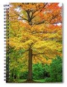 It You've Got It, Flaunt It Spiral Notebook
