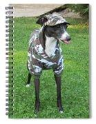 Italian Greyhound Army Spiral Notebook