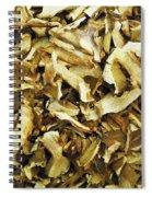 Italian Market Dried Mushrooms Spiral Notebook