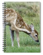 Itchy Fawn Spiral Notebook