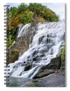 Ithaca Falls Spiral Notebook