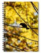 It's A Bird Spiral Notebook