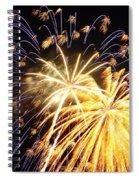 It's A Celebration Spiral Notebook