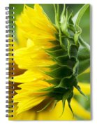 It's All About The View Spiral Notebook