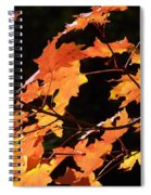 It's Fall Spiral Notebook