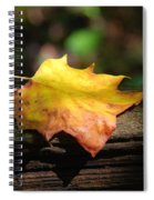 Its Fall Spiral Notebook
