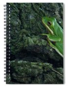 Its Hard To Be Green Spiral Notebook