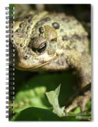 It's Lonely Being Green Spiral Notebook