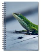 It's Not Easy Spiral Notebook