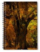 It's Not The Angel Oak Spiral Notebook