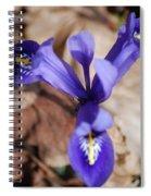 It's Spring 2010 Spiral Notebook