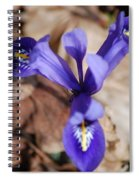 It's Spring 2010 Spiral Notebook