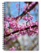 It's Spring 2016 Spiral Notebook