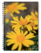 It's Your Day To Shine Spiral Notebook