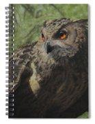 Ivan Spiral Notebook
