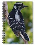 I've Got Your Back - Female Downy Woodpecker Spiral Notebook