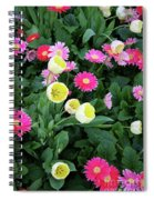 Ivory Tulips And Salmon Daisys Spiral Notebook