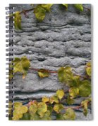 Ivy And Ancient Wall In Old Montreal Hd Photography Spiral Notebook