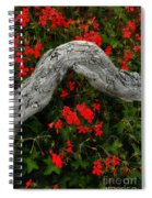 Ivy Geraniums And Log Spiral Notebook