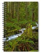 Lifeblood Of The Rainforest Spiral Notebook