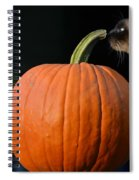 Jack And Molly Spiral Notebook