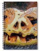 Jack-o-lantern Spiral Notebook
