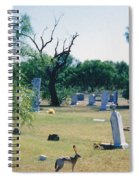 Jack Rabbit In Cementery Spiral Notebook