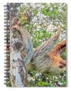 Jack Straw Spiral Notebook