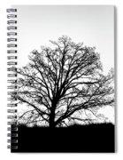 Jackson By Pete Ramirez Spiral Notebook