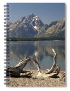 Jackson Lake 1 Spiral Notebook