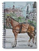 Jackson Square Spiral Notebook