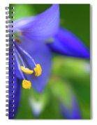 Jacobs Ladder Spiral Notebook