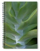 Jade Spiral Notebook