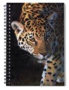 Jaguar Portrait Spiral Notebook