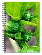 Jalapeno Buds Spiral Notebook
