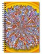 Janet -- Floral Disk Spiral Notebook