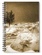 January 7 2010 Spiral Notebook