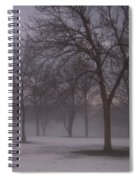 January Fog 4 Spiral Notebook